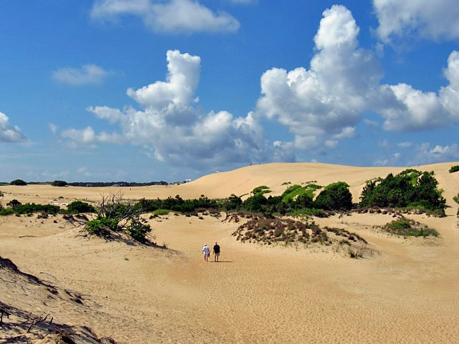 Jockey's Ridge -  Jockey's Ridge State Park, Outer Banks, North Carolina