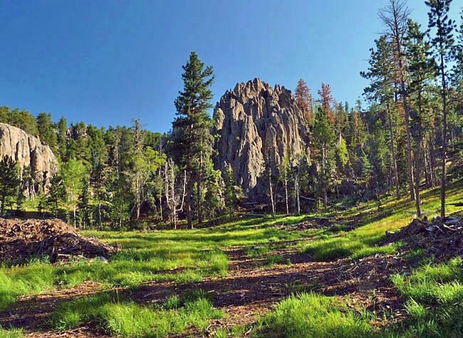 Black Elk Wilderness - Black Hill, South Dakota