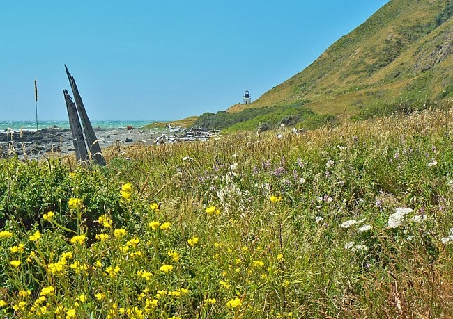 Lost Coast - King Range National Conservation Area, California