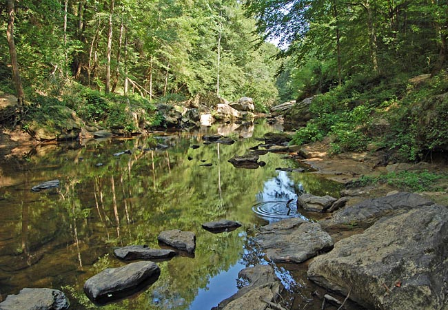 West Fork of the Sipsey River - Sipsey Wilderness, Alabama