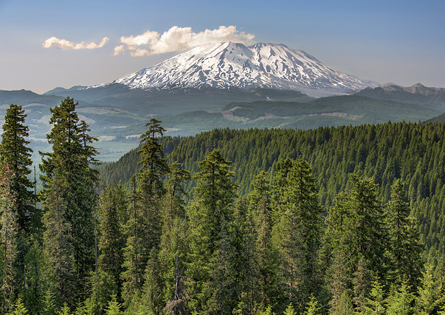 Mount St. Helens - Gifford Pinchot National Forest, Washington