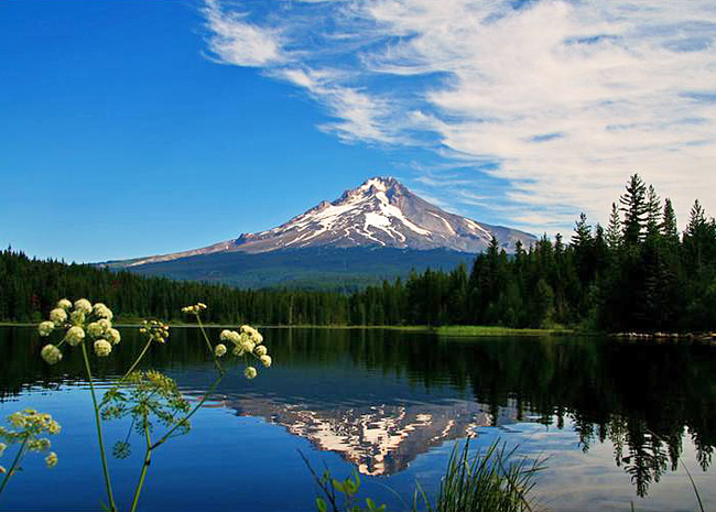 Trillium Lake - Mount Hood National Forest, Oregon