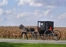 Amish Buggie - Elkhart County, Indiana