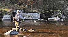 Ausable River Fly Fisherman