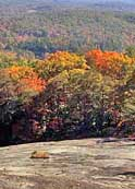 Signs of autumn - Bald Rock Heritage Preserve, South Carolina