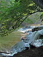 Blue Hole Falls - Duck River