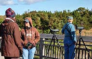 Cape May Birders viewing deck - Cape May Point State Park