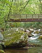 Footbridge - Cascades Recreation Area, Virginia