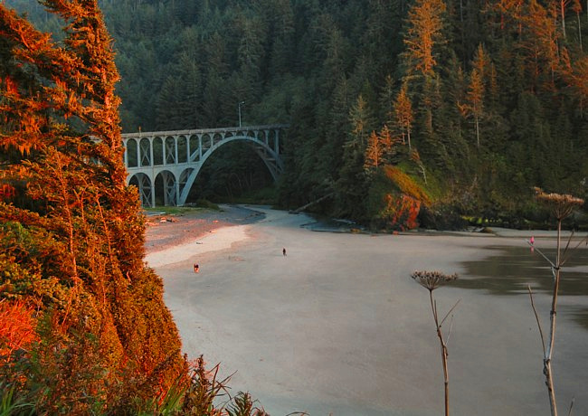 Cape Creek Bridge - Heceta Head Lighthouse State Scenic Viewpoint, Oregon
