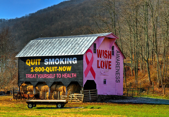 Randolph CountyBarn Gone Pink - West Virginia