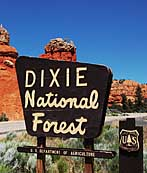 Dixie National Forest Sign - Utah