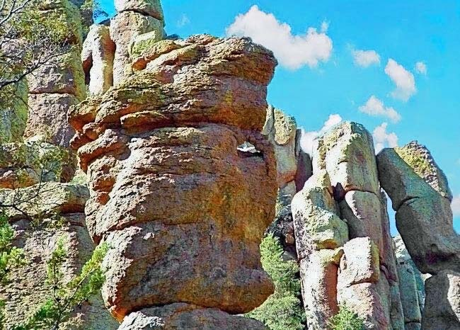 The Sea Captain - Chiricahua National Monument, AZ