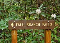 Fall Branch Falls Trail Sign- Georgia