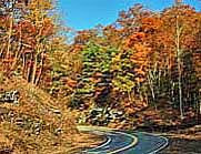 Fall color on the Wigington Highway