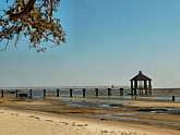 Fontainebleau State Park - Lake Pontchartrain