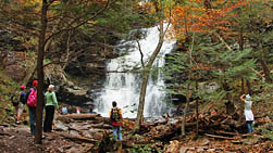 Ganoga Falls On-lookers