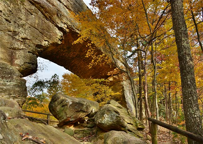 Kentucky's Natural Bridge