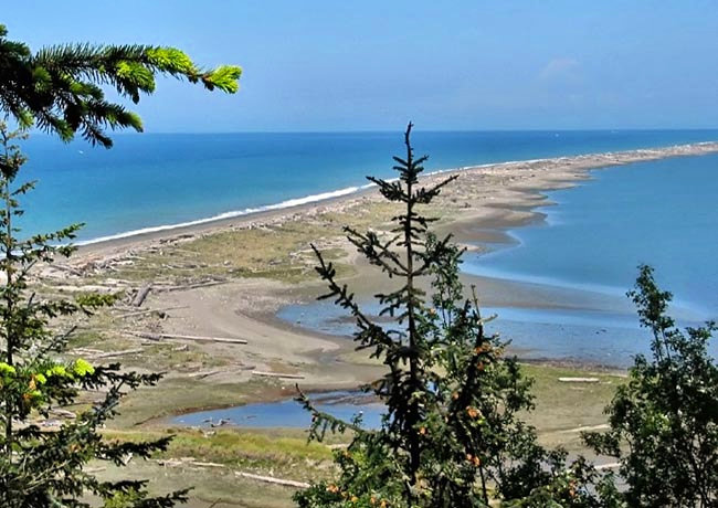 Dungeness Spit - Clallam County, Washington