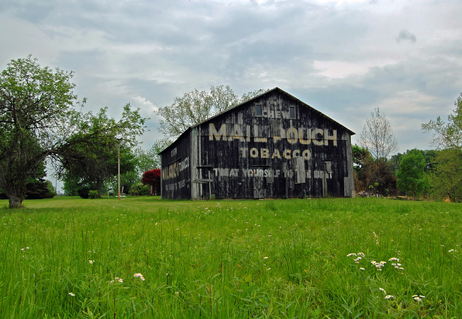 Bartholomew county mail pouch barn indiana for Barn house indiana