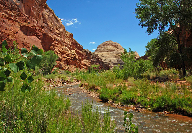 Fremont River - Capitol Reef National Park, Utah