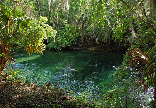 Blue Spring - Orange City, Florida