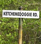 Ketchemedoggie Road Sign - Talladega National Forest, Alabama