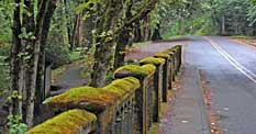 Moss covered Latourell Creek Bridge