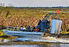 Airboat on the St Johns River - Brevard County, Florida