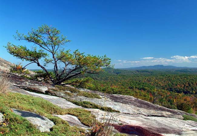 Bald Rock - Bald Rock Heritage Preserve, Cleveland, South Carolina