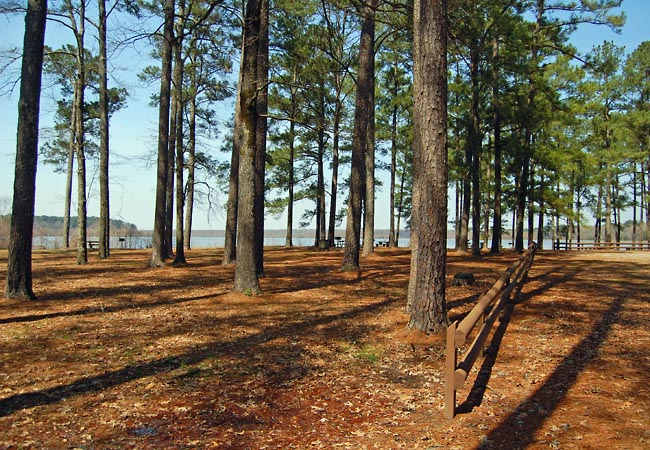 Bluff Lake - Noxubee National Wildlife Refuge, Brooksville, Mississippi