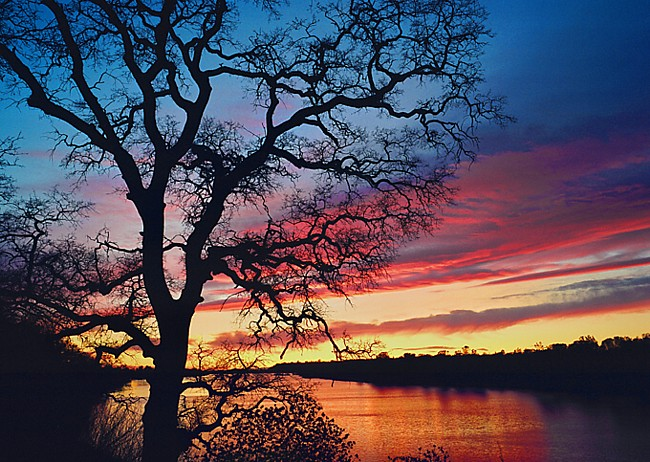 Lake natoma california for Lake natoma fishing