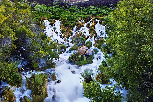 Niagara Springs - Thousand Springs State Park, Idaho