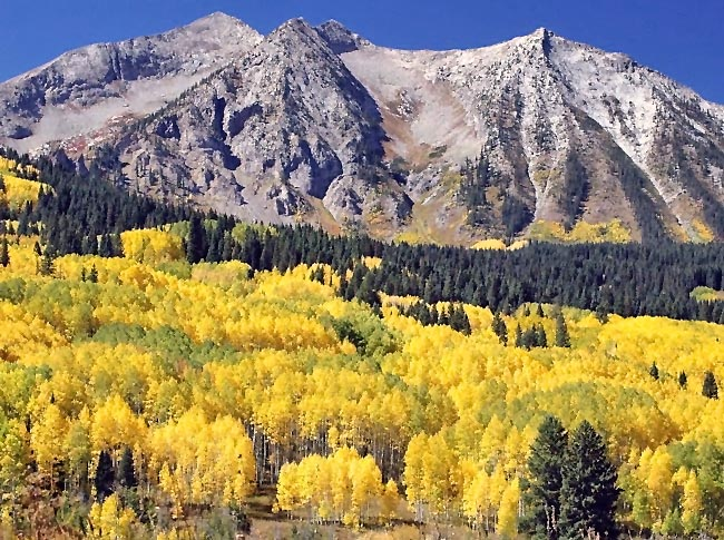 Kebler Pass - Gunnison County, Colorado