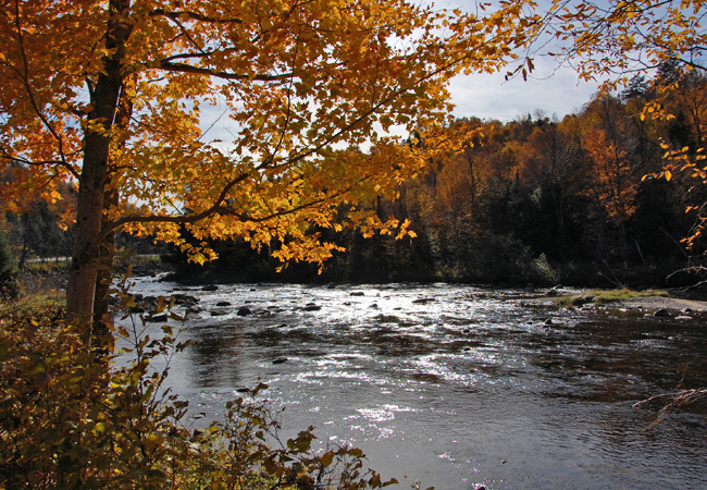 Ausable river new york