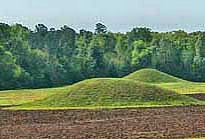 Pharr Mounds - Natchez Trace Parkway, Tennessee