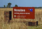 Entrance Sign - Noxubee National Wildlife Refuge