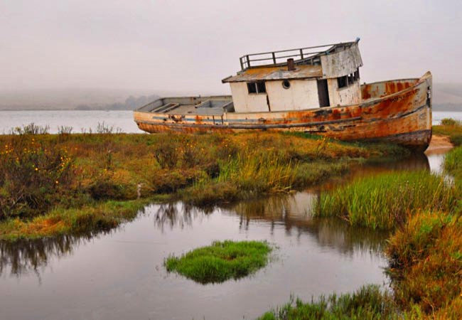 Point Reyes Ghost Ship - Point Reyes National Seashore, California