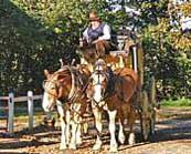 Old Sturbridge Village Stagecoach and costumed interpreter
