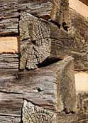 John Oliver Log Home - dovetail joint detail -  Great Smoky Mountain National Park