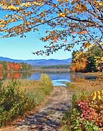 Road To Berry Pond - Moultonborough, New Hampshire