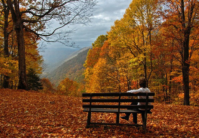 Virginia States Parks State Park West Virginia