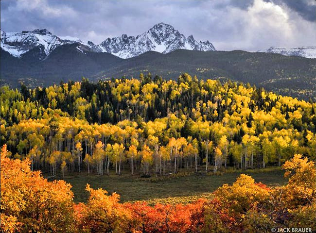 Autumn in the Sneffels - Mount Sneffels Wilderness Area, Colorado