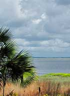 Channel View - Sapelo Island, GA