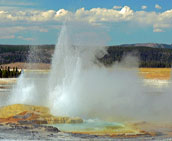 Yellowstone Geyser - Yellowstone National Park